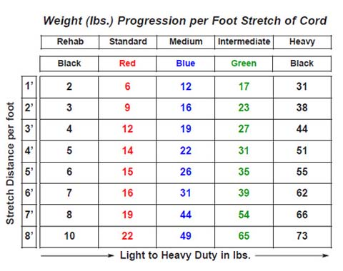 weight progression chart